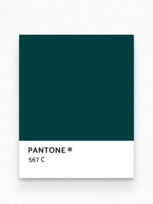 Hello Sticky - Shop - Peel &Amp; Stick Removable Wallpaper - Stripe, Spot &Amp; Dot Wallpaper - Emerald Terrazzo - Pantone View