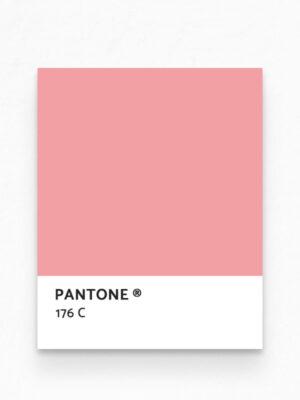 Hello Sticky - Shop - Peel &Amp; Stick Removable Wallpaper - Urban Jungle Wallpaper - Seafoam Flamingos - Pantone View