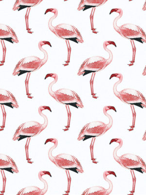 Hello Sticky - Shop - Peel &Amp; Stick Removable Wallpaper - Urban Jungle Wallpaper - Simply Flamingos - Zoomed In View