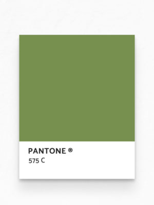 Hello Sticky - Shop - Peel &Amp; Stick Removable Wallpaper - Urban Jungle Wallpaper - Tropical Flamingos - Pantone View
