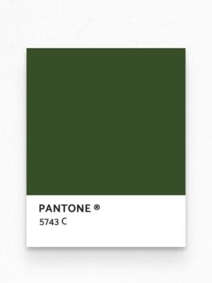 Hello Sticky - Shop - Peel &Amp; Stick Removable Wallpaper - Urban Jungle Wallpaper - Birds Of Paradise - Pantone View