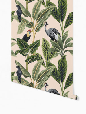 Hello Sticky - Shop - Peel &Amp; Stick Removable Wallpaper - Urban Jungle Wallpaper - Birds Of Paradise - Roll 1 View