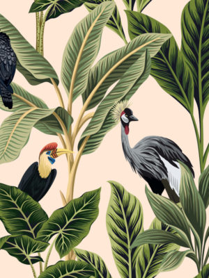 Hello Sticky - Shop - Peel &Amp; Stick Removable Wallpaper - Urban Jungle Wallpaper - Birds Of Paradise - Zoomed In View