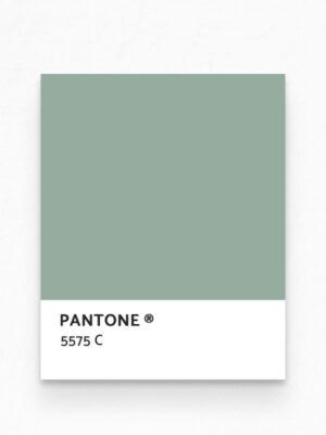 Hello Sticky - Shop - Peel &Amp; Stick Removable Wallpaper - Urban Jungle Wallpaper - Desert Palms - Pantone View