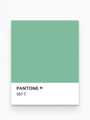 Hello Sticky - Shop - Peel &Amp; Stick Removable Wallpaper - Urban Jungle Wallpaper - Pink &Amp; Palm - Pantone View
