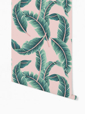Hello Sticky - Shop - Peel &Amp; Stick Removable Wallpaper - Urban Jungle Wallpaper - Pink &Amp; Palm - Roll 1 View