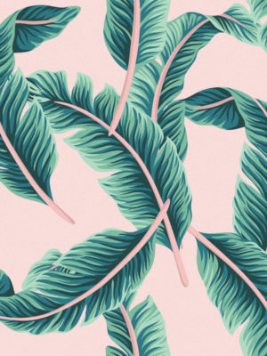 Hello Sticky - Shop - Peel &Amp; Stick Removable Wallpaper - Urban Jungle Wallpaper - Pink &Amp; Palm - Zoomed In View