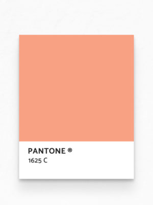 Hello Sticky - Shop - Peel &Amp; Stick Removable Wallpaper - Fruity &Amp; Floral Wallpaper - Mini Oranges - Pantone View
