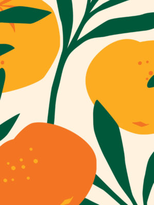 Hello Sticky - Shop - Peel &Amp; Stick Removable Wallpaper - Fruity &Amp; Floral Wallpaper - Orange Blossom - Zoomed In View