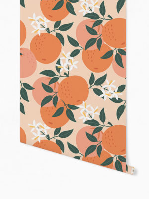 Hello Sticky - Shop - Peel &Amp; Stick Removable Wallpaper - Fruity &Amp; Floral Wallpaper - Orange You Glad - Roll 1 View