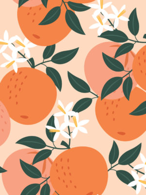Hello Sticky - Shop - Peel &Amp; Stick Removable Wallpaper - Fruity &Amp; Floral Wallpaper - Orange You Glad - Zoomed In View
