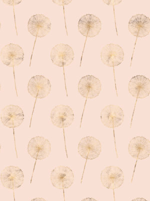 Hello Sticky - Shop - Peel &Amp; Stick Removable Wallpaper - Fruity &Amp; Floral Wallpaper - Whispering Dandelion - Zoomed In View