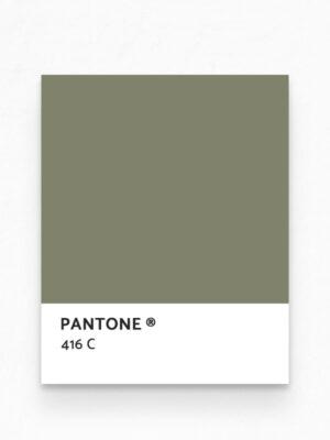 Hello Sticky - Shop - Peel &Amp; Stick Removable Wallpaper - Urban Jungle Wallpaper - After Dark Palms - Pantone View