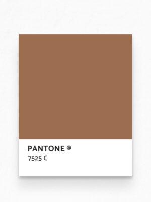 Hello Sticky - Shop - Peel &Amp; Stick Removable Wallpaper - Urban Jungle Wallpaper - Golden Palms - Pantone View