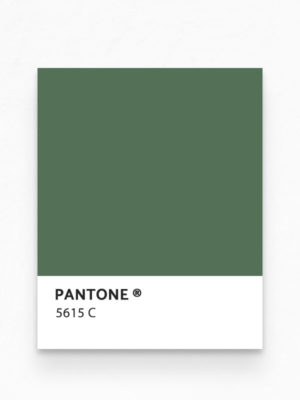 Hello Sticky - Shop - Peel &Amp; Stick Removable Wallpaper - Urban Jungle Wallpaper - Green Thumb - Pantone View