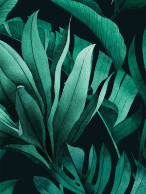 Hello Sticky - Shop - Peel &Amp; Stick Removable Wallpaper - Urban Jungle Wallpaper - Green With Envy - Zoomed In View