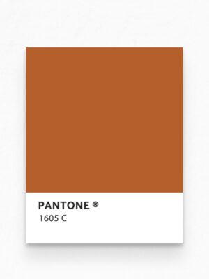 Hello Sticky - Shop - Peel &Amp; Stick Removable Wallpaper - Stripe, Spot &Amp; Dot Wallpaper - Giraffe - Pantone View