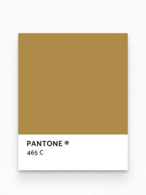 Hello Sticky - Shop - Peel &Amp; Stick Removable Wallpaper - Stripe, Spot &Amp; Dot Wallpaper - Gold Herringbone - Pantone View