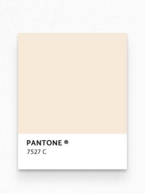 Hello Sticky - Shop - Peel &Amp; Stick Removable Wallpaper - Stripe, Spot &Amp; Dot Wallpaper - Leopard - Pantone View