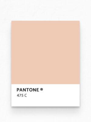 Hello Sticky - Shop - Peel &Amp; Stick Removable Wallpaper - Stripe, Spot &Amp; Dot Wallpaper - Peach Herringbone - Pantone View