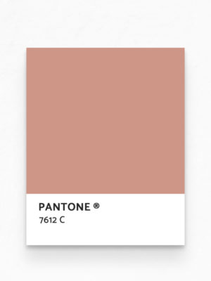 Hello Sticky - Shop - Peel &Amp; Stick Removable Wallpaper - Stripe, Spot &Amp; Dot Wallpaper - Pink Terracotta Herringbone - Pantone View