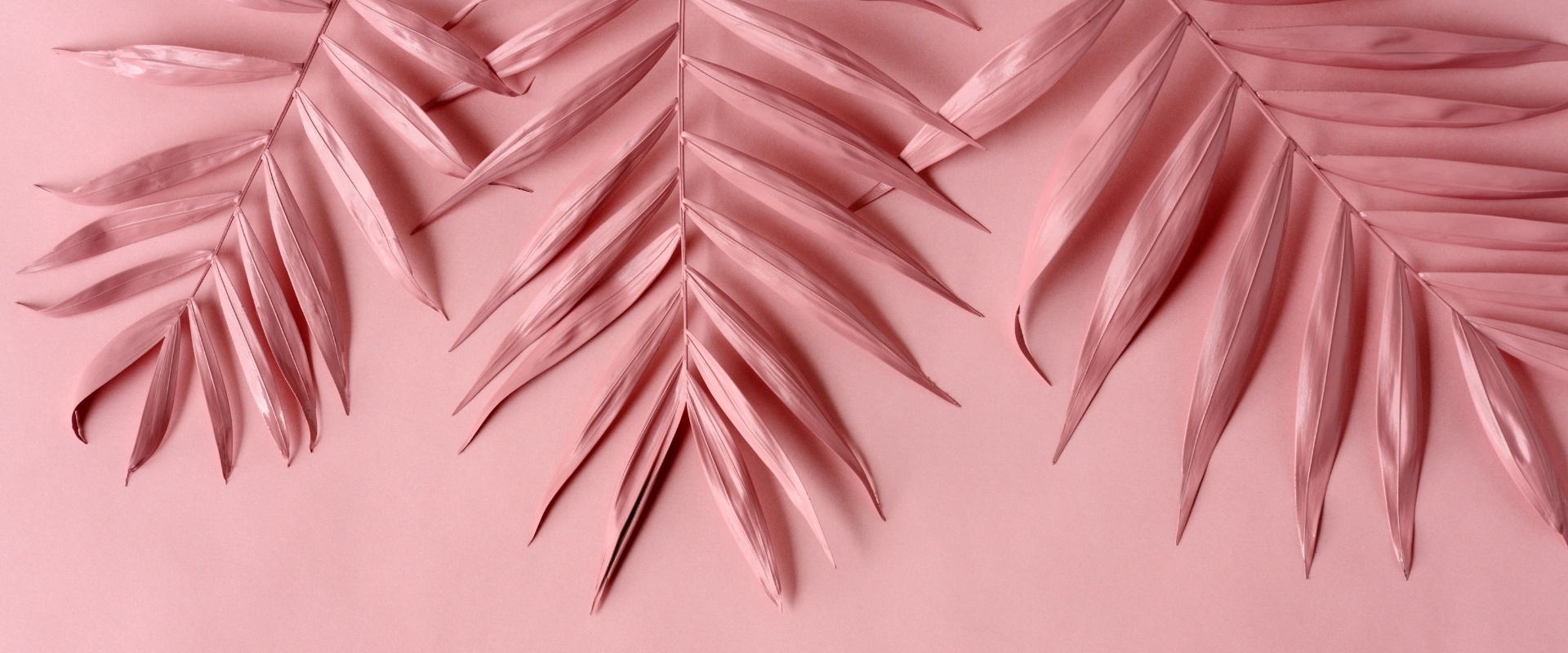 Hello Sticky - Shop - Peel & Stick Removable Wallpaper - Pink Wallpaper - Collection Header